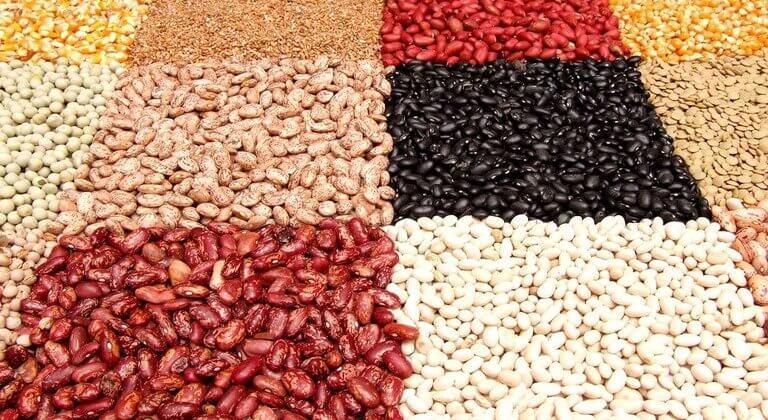 farine di legumi propriietà e tipologie