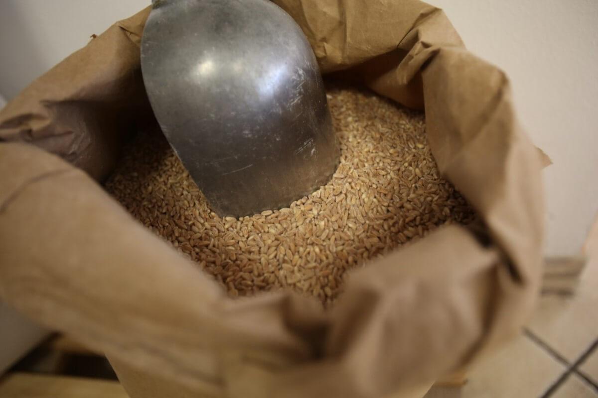 produzione farine cuneo